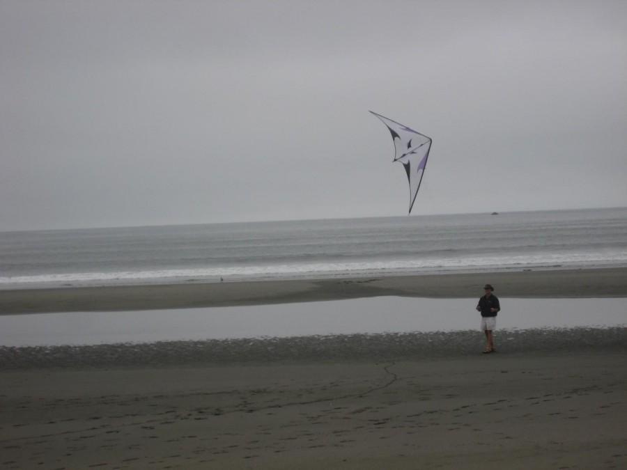 Coast Crescent City 8-2 & 3-2008 Kites 002.jpg