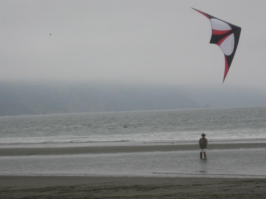 Coast Crescent City 8-2 & 3-2008 Kites 018.jpg