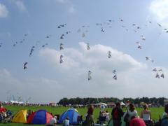A sky full of Revs