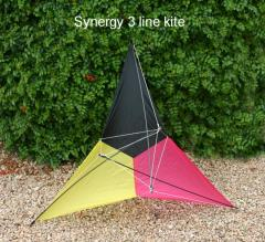 Synergy 3 line kite