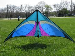 Jo's New kite
