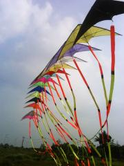 15 Stacks Stunt Kites with Tails