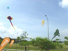 Singapore International Kite Day 2010