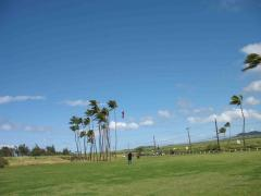 Rev II kite fun, Paia Maui.jpg