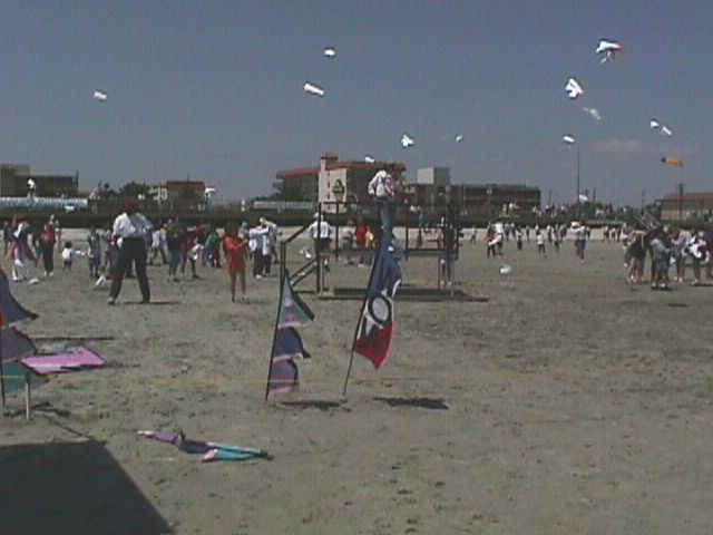 Kids kites
