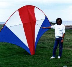 Pocket Kite 10 Ft X 8ft