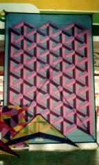 Escher Della Porta 14ft X 11 Ft