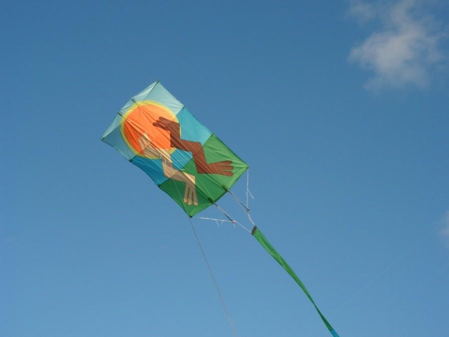 mielow kites
