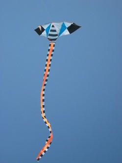 Kite Flyers India