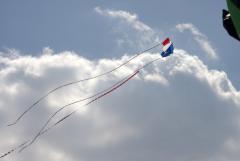 CB 2013   Balmer's Brandes Flare flying