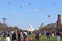 CB 2013   Capitol