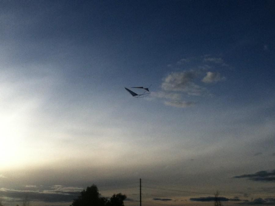 Gliding Freedom