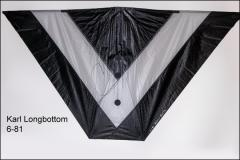 Karl Longbottom 6-81 indoor kite