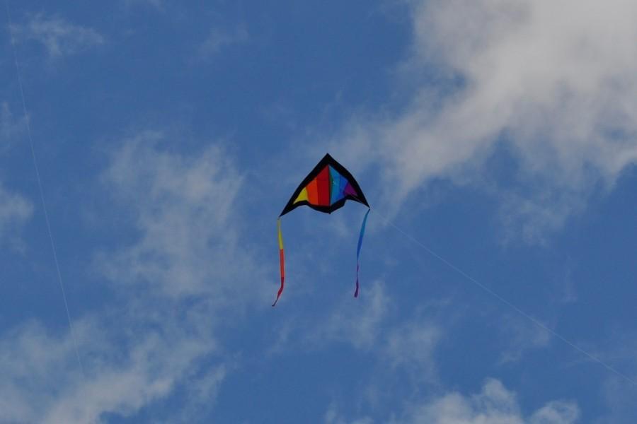 Newport Kite Festival 2013