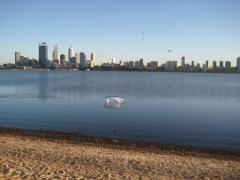 Swan River outing 3