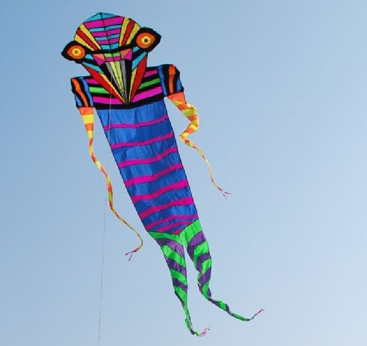 bird Man kite
