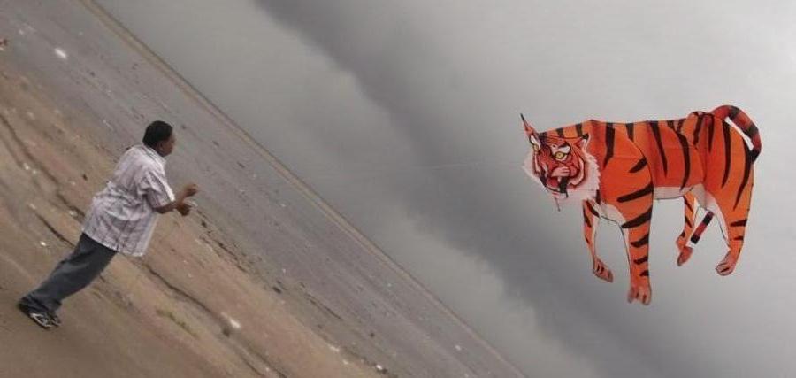 3d tiger kite