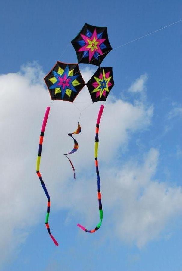 black star kite