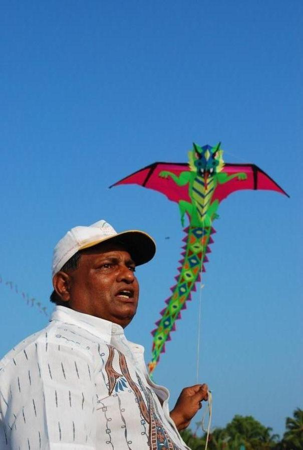 brave-heart dragon kite