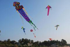 Ashok Designer Kites