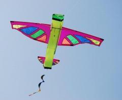 3d aeroplane kite