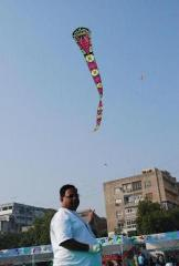 snake kite