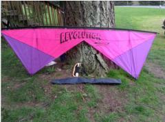 Revolution 1 Kite Vintage