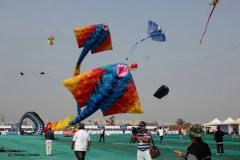International Kite Festival Pune 2014