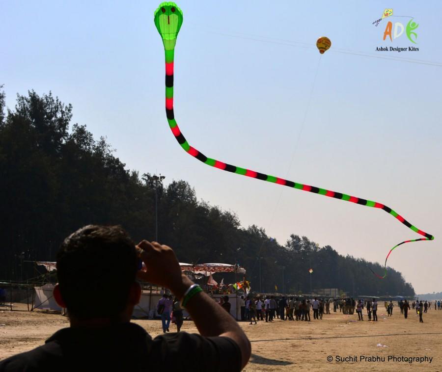 Two line 3d inflattable snake kite Adk ashok designer kites