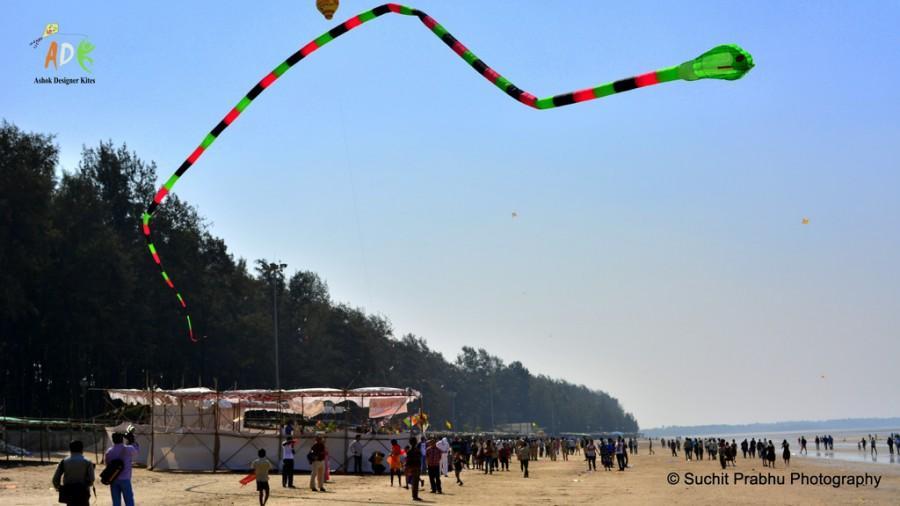 2 line 3d inflattable snake kite Adk ashok designer kites