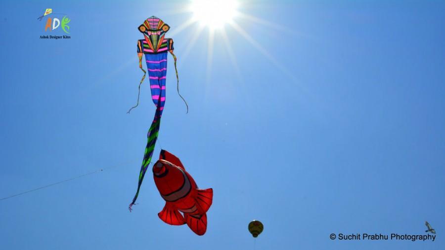 Adk bird Man kite ashok designer kites
