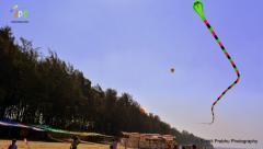 2 Two line 3d inflattable snake kite Adk ashok designer kites