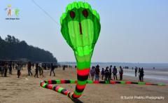 2 line inflattable 3d cobra snake kite Adk ashok designer kites