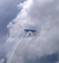 Some of my Kites
