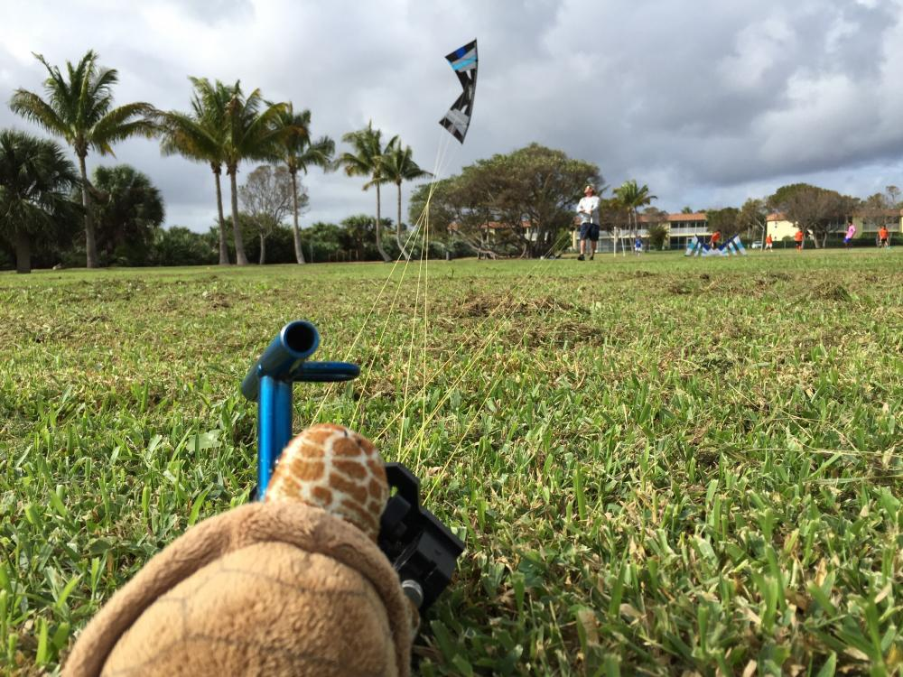 Scott Benz training on dogstake...
