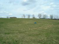 nearby_field.JPG