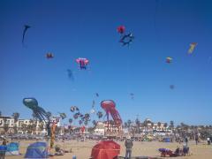 Kite Party 14 - Single Line Display