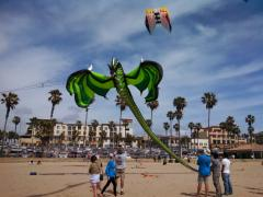 Kite Party 14 - Dragon