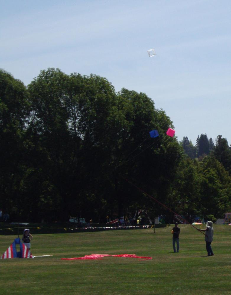 San Ramon Art and Wind Festival 2016 - Cube kites