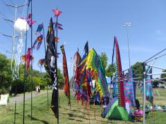 San Ramon Art and Wind Festival 2016 - Banners