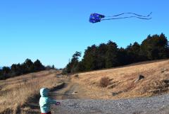 Flying her brother's Christmas kite