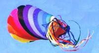 Flying Spinsock.jpg
