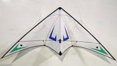 V II Gravity Performance - Lam Hoac