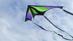 3/4 Stealth Delta -  Designed by Robert Brasington, made by me!