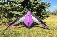 Benson_Deep_Space_standard_in_purple.jpg