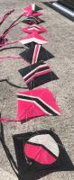all pink kites 2.jpg