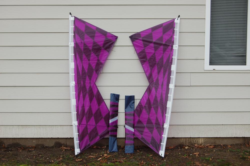 Purple Perspective Pair