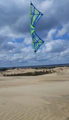 Hope of Spring Jockey's Ridge