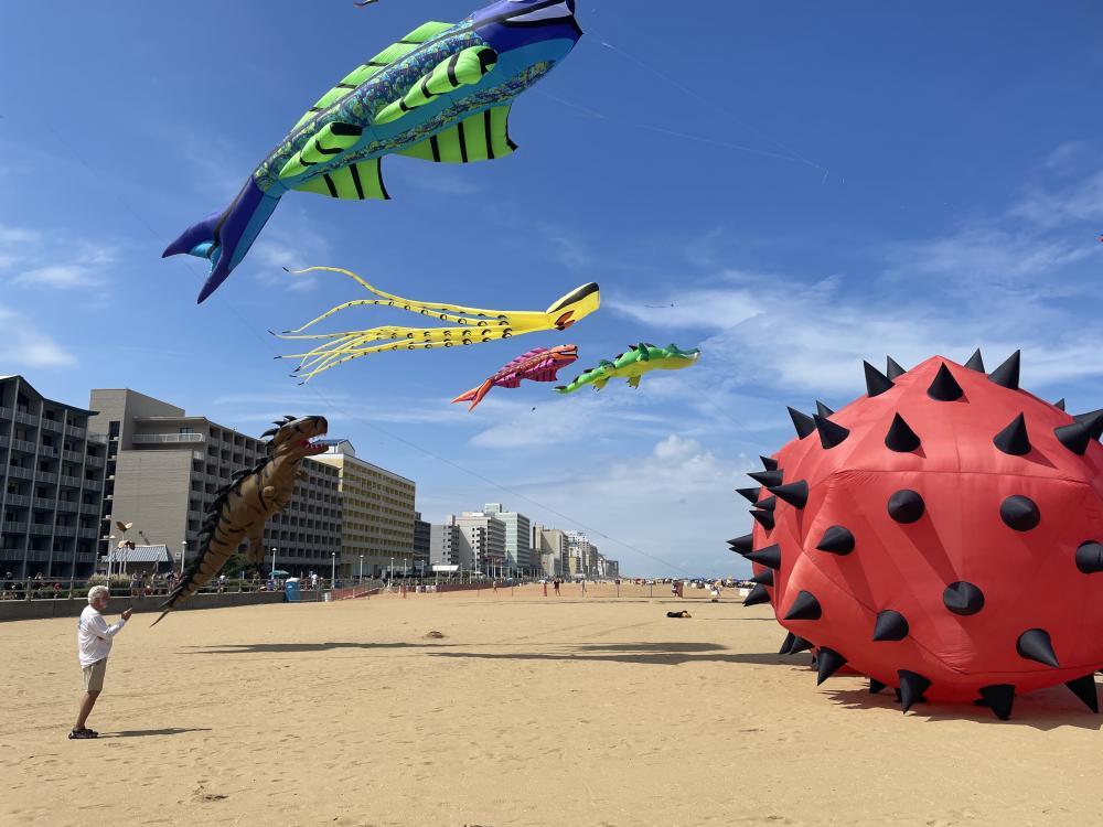 Kite Festival Photos