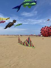 Riffclown ZigZag in the show kite field